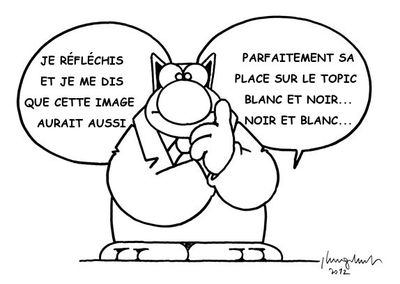 Topic des chats - Page 31 OWbjJ