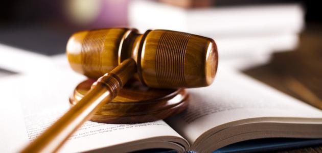 الوجيز في القانون الدستوري، الدولة، الدستور، السيادة ، الأنظمة السياسية والمؤسسات التونسية