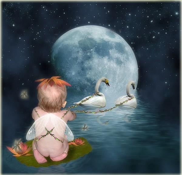 bonsoir douce nuit Vv1JA