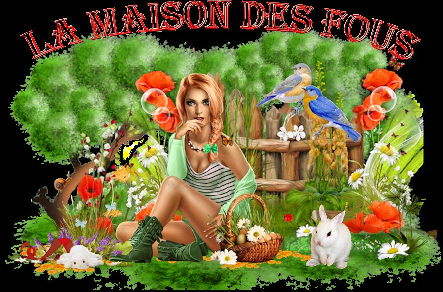 LA MAISON DES FOUS