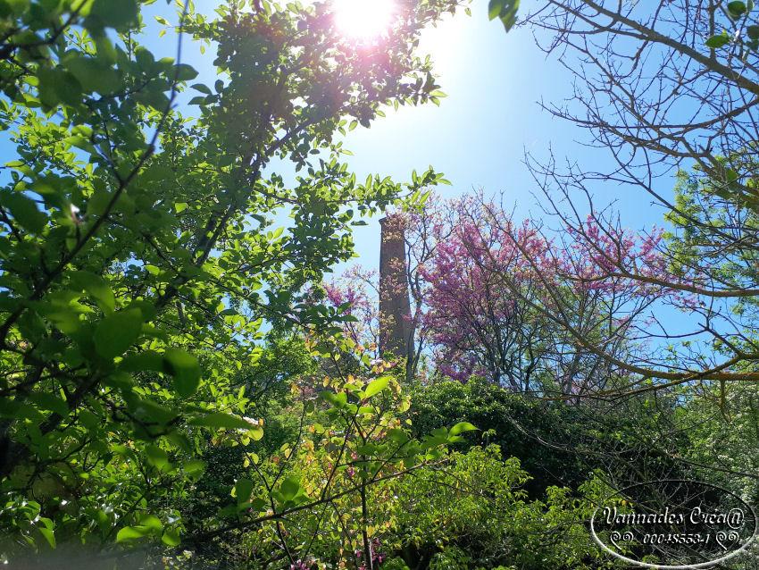 """La Vallée de St Pons """" La Vallée Rose """" à Gemenos Bouches du Rhône ♥♥♥ WdnAR"""