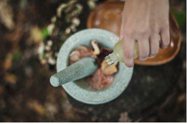 Préparation plantes médicinales naturopathie